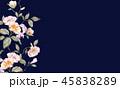 花 フラワー お花のイラスト 45838289