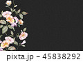 花 フラワー お花のイラスト 45838292