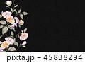 花 フラワー お花のイラスト 45838294