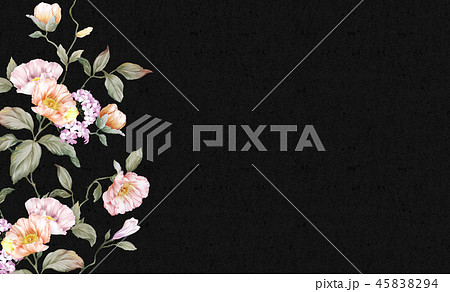花 フラワー お花 45838294
