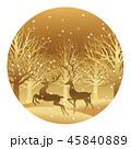 森 トナカイ 動物のイラスト 45840889