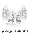 森 トナカイ 動物のイラスト 45840891