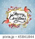 クリスマス 鳥 スノーフレークのイラスト 45841844