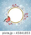 クリスマス 鳥 スノーフレークのイラスト 45841853