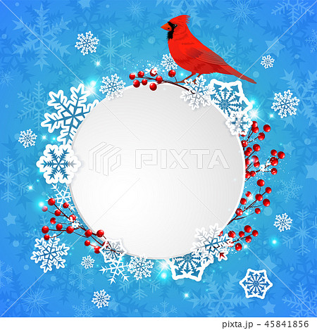 Christmas banner with snowflakes and cardinal bird 45841856