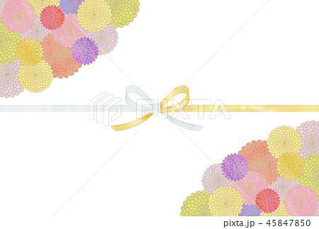 菊と水引 45847850