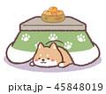 柴犬コタツ 45848019