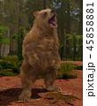 熊 グリズリー 動物のイラスト 45858881