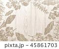 植物 ハーブ フレームのイラスト 45861703