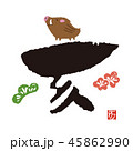 亥 猪 干支のイラスト 45862990