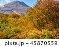 紅葉 山 風景の写真 45870559