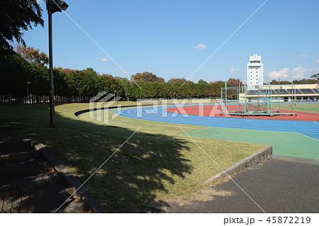 陸上競技場 トラック 白井運動公園(千葉県) 45872219