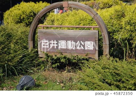 白井運動公園(千葉県白井市) 看板 45872350