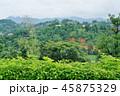Mountain View in Chiang Rai, Thailand 45875329