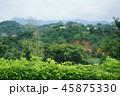 タイ王国チェンラーイ県の風景(View in Chiang Rai, Thailand) 45875330