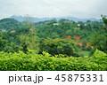 タイ王国チェンラーイ県の風景(View in Chiang Rai, Thailand) 45875331