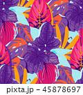 カラー 色 色彩のイラスト 45878697