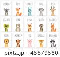 動物 うさぎ ウサギのイラスト 45879580