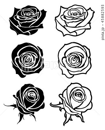 Close Up Rose Vector Tattoo Logos Floral のイラスト素材