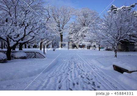 一面に広がる白い雪、群馬県高崎市、高崎公園の冬の雪景色 45884331
