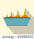 玉葱 アイコン イコンのイラスト 45896302