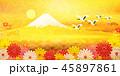 富士山 菊 鶴のイラスト 45897861