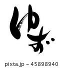 ゆず 筆文字 柑橘類のイラスト 45898940