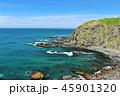 青空 晴れ 海の写真 45901320