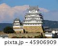 姫路城 白鷺城 城の写真 45906909