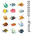 アクアリウム 水族園 水族館のイラスト 45908306