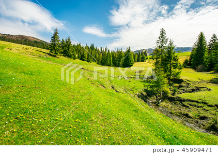 wonderful springtime weather in mountains 45909471