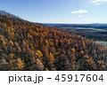 晩秋の空撮 45917604