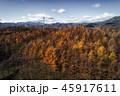 晩秋の空撮 45917611
