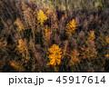 晩秋の空撮 45917614
