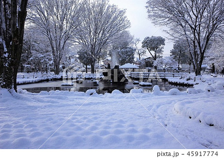 一面に広がる白い雪、噴水、群馬県高崎市、高崎公園の冬の雪景色 45917774