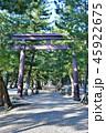 神社 出雲大社 参道の写真 45922675