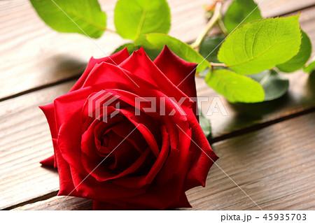 言葉 赤い 薔薇 花