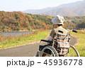 紅葉 シニア女性 車椅子 後ろ向き 45936778