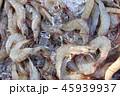 魚類 釣り フィッシングの写真 45939937