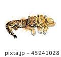 ライオン タイガー トラのイラスト 45941028