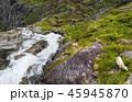 ノルウェー 羊 放牧の写真 45945870