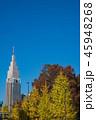 新宿 代々木ビル 高層ビルの写真 45948268