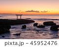 夜明けの岩礁 45952476