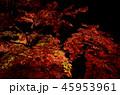 秋の風景 45953961
