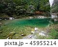仁淀ブルー 安居渓谷 清流の写真 45955214