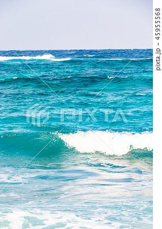 鹿児島県奄美市大浜海浜公園 45955568