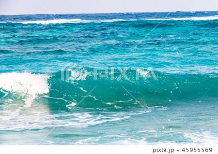 鹿児島県奄美市大浜海浜公園 45955569