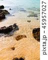 自然 海 海岸の写真 45957027