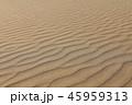 風紋 砂 砂浜の写真 45959313