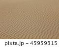風紋 砂 砂浜の写真 45959315